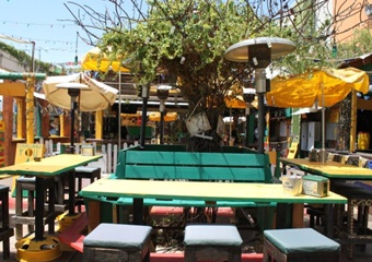 pet friendly restaurants in mesa, dogs allowed restaurants in mesa, arizona